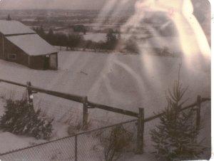 snow1980a001