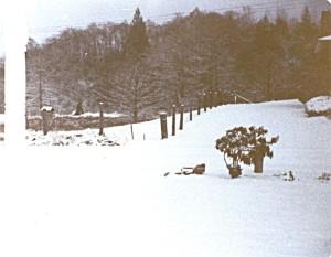 snow1980b001